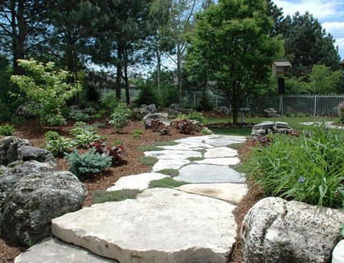 Choosing a Landscape Design Firm